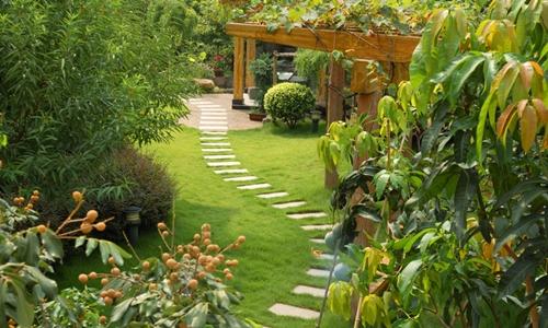 Servizi archivi re gi giardini for Tecniche di irrigazione